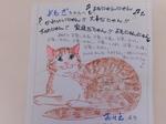 日立市愛猫よもぎちゃん